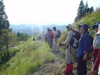 2008_jr_walking_5.JPG