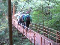 2008_jr_walking_6.JPG