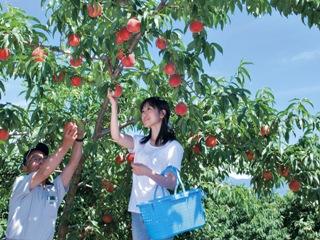 2010_peach-1.jpg