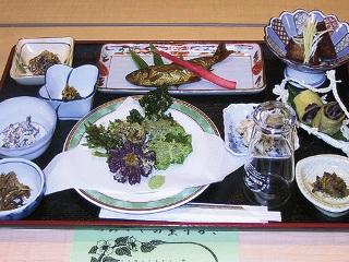 2011-tsumikusa02.jpg