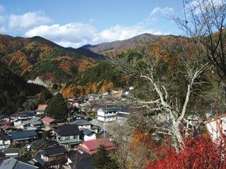 2011_akane_05.jpg