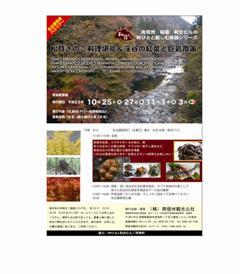 2011_kinoko.jpg