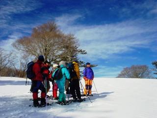 2011_snow_1.JPG