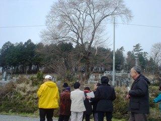 2012_sakuramori_guide1_4.JPG