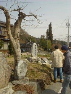 2012_sakuramori_guide3-3.JPG