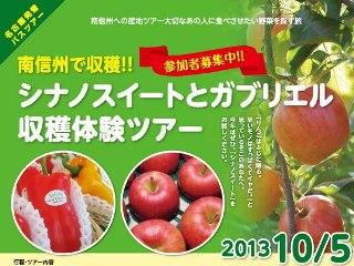 2013_sweet1.jpg