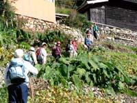 osirase-2007-kowada-13.jpg