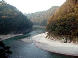 osirase-2007-tamoto-3.jpg