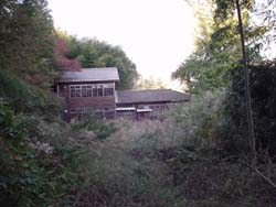 2007-tamoto9.jpg
