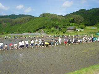 2008_taiken2_3.jpg