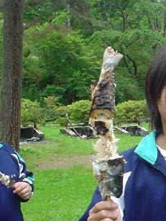 2008_taiken3_6.JPG