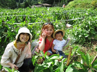 2010_nasu_5.jpg