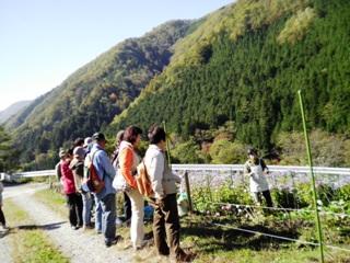 2011_akane0.JPG