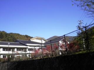 2011_akane1.JPG