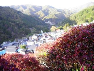 2011_akane14.JPG