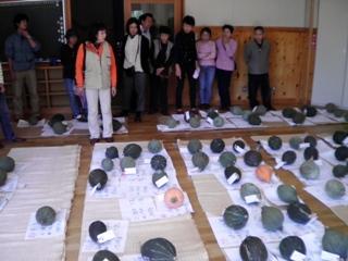 2011_akane7.JPG