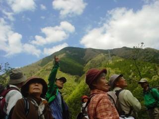 2011_sakanbe_4.jpg
