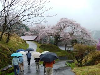 2012_nanseibu2.JPG
