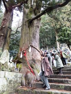 2012_shimotsuki1-3.JPG