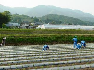 2012_taiken_3.JPG