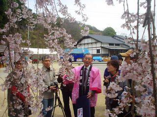 2013_sakuratour1.JPG
