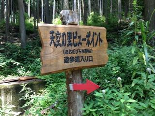 2013_tooyama2.jpg