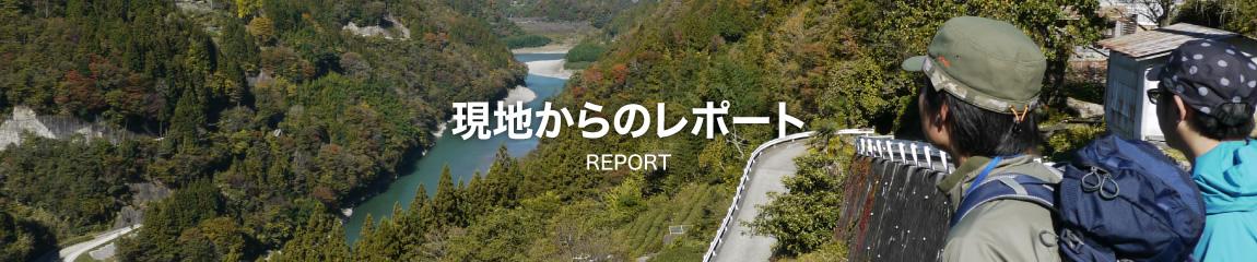 現地からのレポート