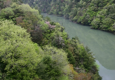 南信州フォトガイドのご案内 イメージ01