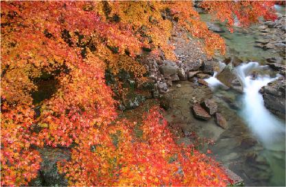 南信州フォトガイドのご案内 イメージ02