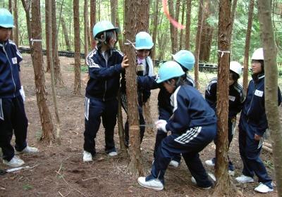 森林営林 イメージ02