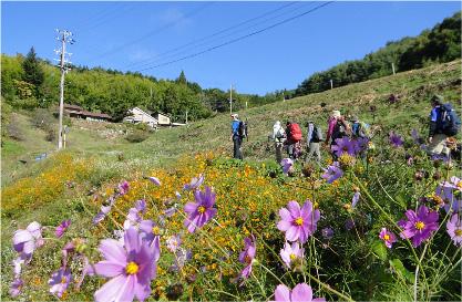 陣馬形山登山 イメージ03