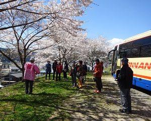 南信州 飯田 桜 ツアー