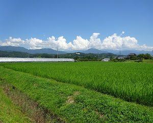 南信州 飯田 農業体験